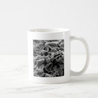 Mug cellules ou bactéries noires