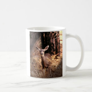 Mug Cerfs communs en parc national de Yosemite