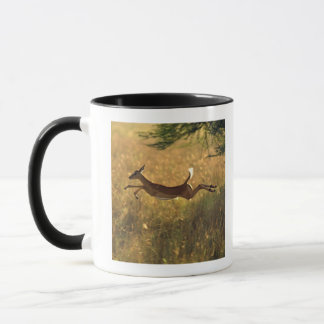 Mug Cerfs communs sautant par le champ