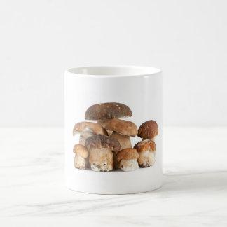 Mug champignons