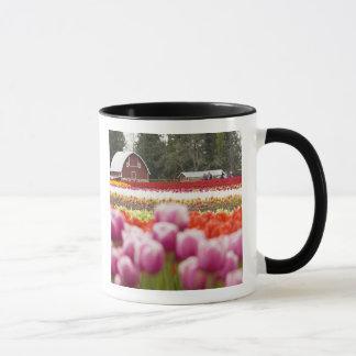 Mug Champs de tulipe du Mont Vernon, le comté de