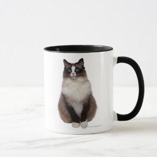 Mug Chat de Ragdoll