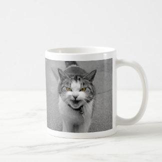 Mug Chat fâché