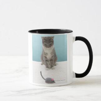 Mug Chat regardant la souris de jouet sur la