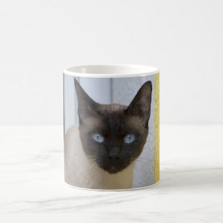 Mug Chat siamois de beau point de joint