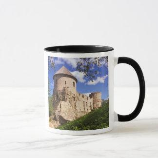 Mug Château de Cesis en Lettonie centrale