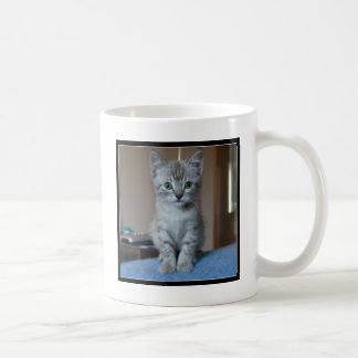 Mug Chaton tigré gris
