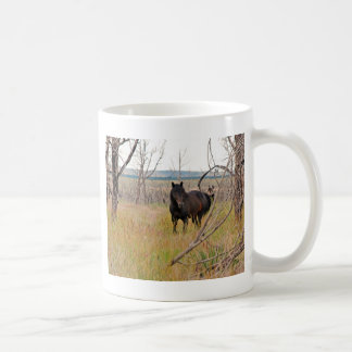 Mug cheval sauvage dans le MESA Verde