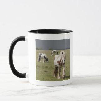 Mug Chevaux de Clydesdale dans un domaine, le