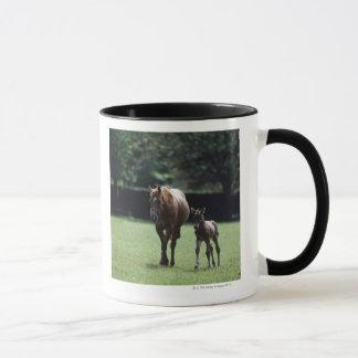Mug Chevaux - pur sang, jument et poulain,