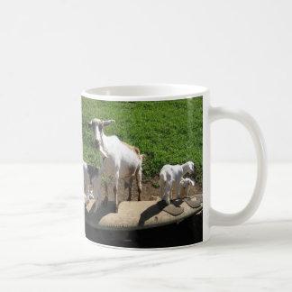 Mug Chèvres surfantes