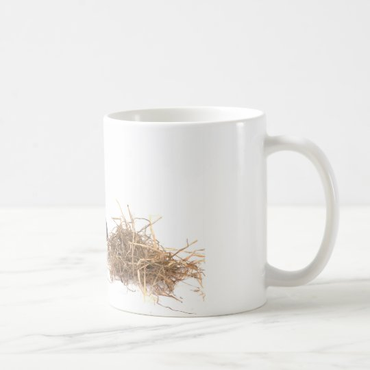 Mug chinchillas
