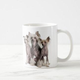 Mug Chinois Crested