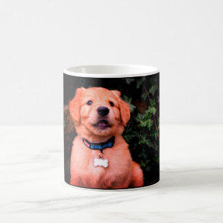 Mug Chiot de golden retriever
