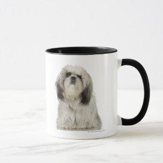Mug Chiot de Terrier tibétain