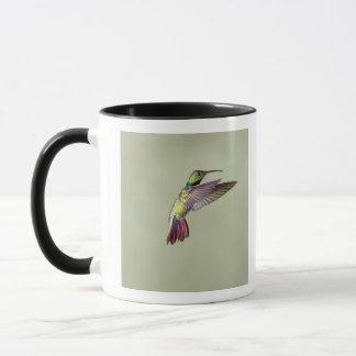 Mug Colibri Vert-breasted Anthracocorax 2 de mangue
