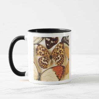 Mug Collection de papillon