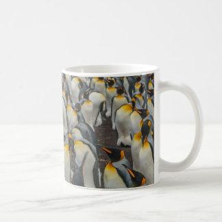 Mug Colonie de pingouin de roi, Malouines