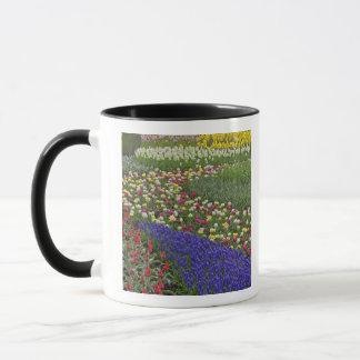 Mug Conception de jardin de jacinthe de raisin, et