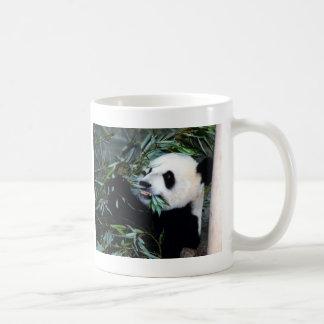 Mug consommation de panda