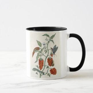 """Mug Consoude, """"d'un de fines herbes curieux"""", 1782"""