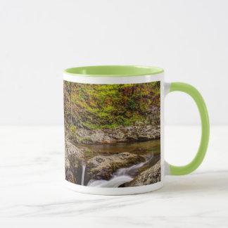 Mug Courant de forêt dans Great Smoky Mountains