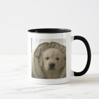 Mug Coussin autour de chien