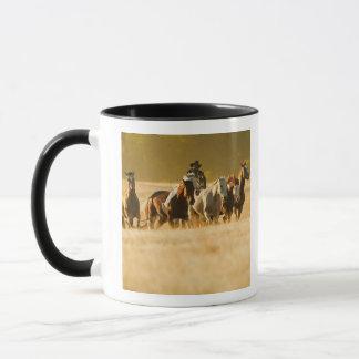 Mug Cowboy vivant en troupe les chevaux 2