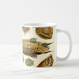 Mug Cowfish de boxfish d'Ernst Haeckel Ostraciontes