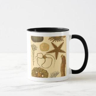 Mug Créatures sous-marines de mer