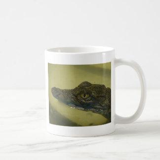 Mug crocodile du Nil