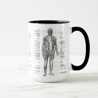 Mug Cru - muscles humains marqués d'anatomie