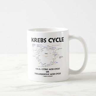 Mug Cycle d'acide citrique de cycle de Krebs A.K.A.