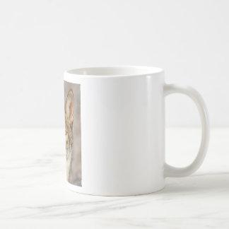 Mug de coyote fin