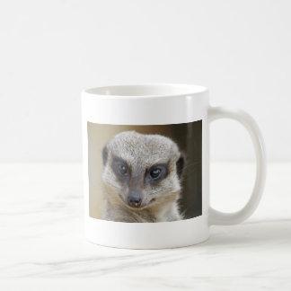 Mug De Meerkat fin