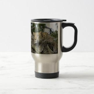 Mug De Voyage Chat sauvage animal de safari de l'Afrique d'arbre