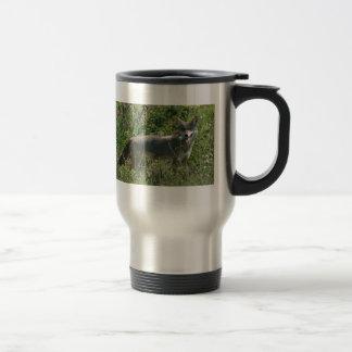 Mug De Voyage coyote