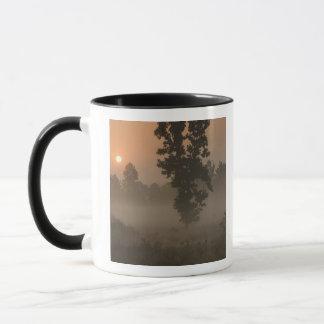 Mug Début de la matinée, Soleil Levant et brouillard