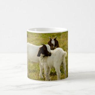 Mug Deux chèvres