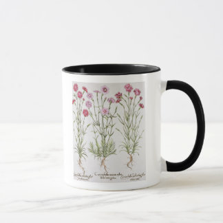 Mug Diverses variétés d'oeillets, du 'Hortus Ey