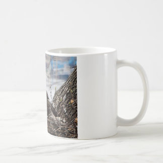 Mug Eagle chauve avec des aiglons