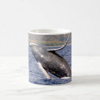 Mug Éclaboussement de baleine de bosse