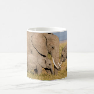 Mug Éléphant avec des jeunes