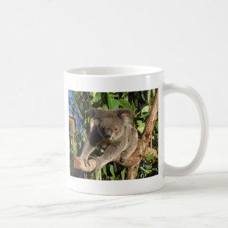 Mug Escalade Koala.jpg