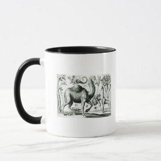 Mug Étude des animaux et des fleurs, gravée