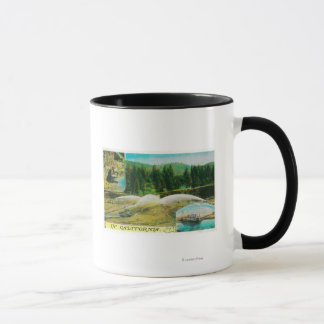 Mug Extraction de l'or en Californie StateState