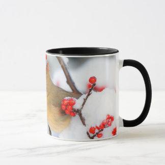 Mug Femelle cardinale du nord sur le Winterberry