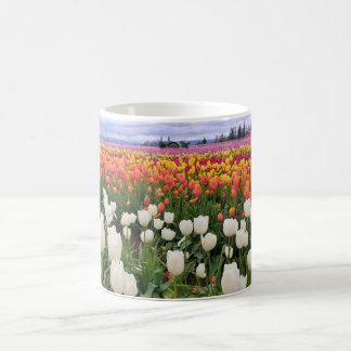 Mug Ferme de tulipe