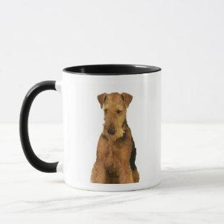 Mug Fermez-vous d'un terrier d'airedale