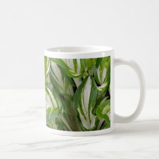 Mug Feuille rayé vert et blanc de hosta